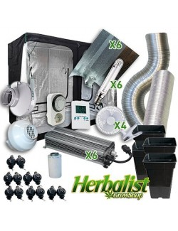 Kit de Cultivo interior Herbalist 290x290 Electrónico