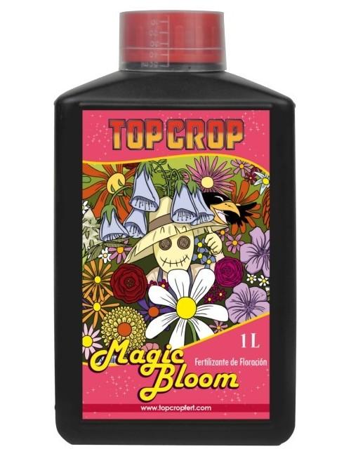 Top Bloom