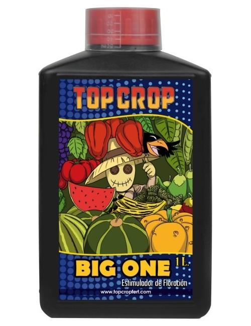 Big One Envase-250 ml.